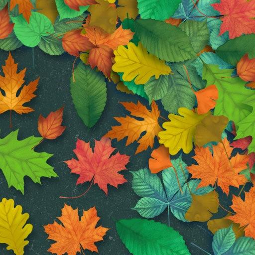 Leaves game